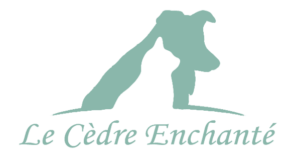 Elevage du cèdre Enchanté